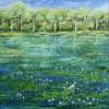 kimberley-wetlands-sold