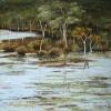 wetlands-reflection
